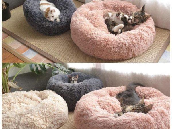premium-cat-supplies-anti-anxiety-calming-cat-donut-bed-best-world-cat-litter-28385941553207_2048x